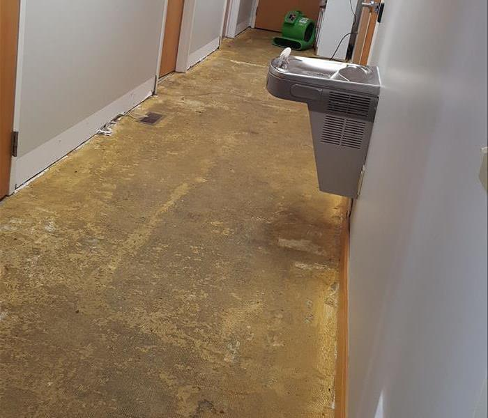 Sewage Backup in Thumb Office Building After