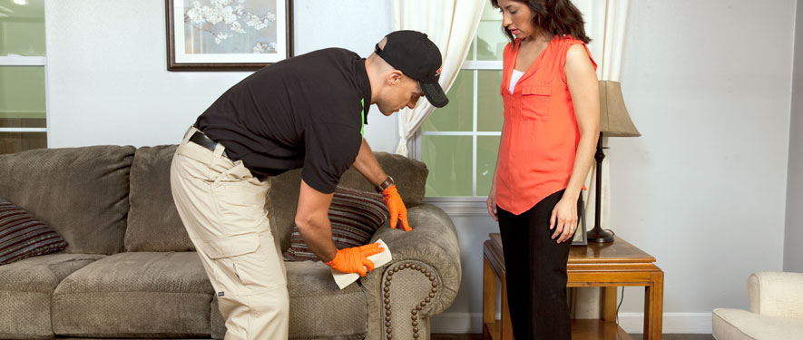 Sandusky, MI carpet upholstery cleaning